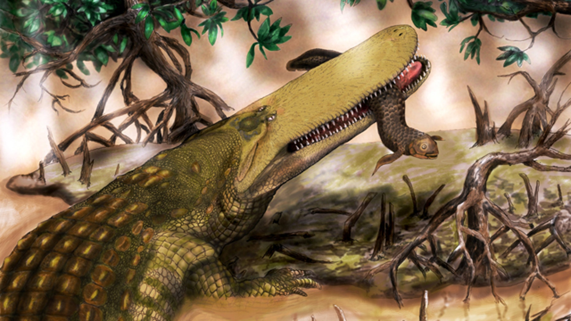 MU assistant professor Casey Holliday nicknamed Aegisuchus witmeri Shieldcroc because of its thick skinned shield.