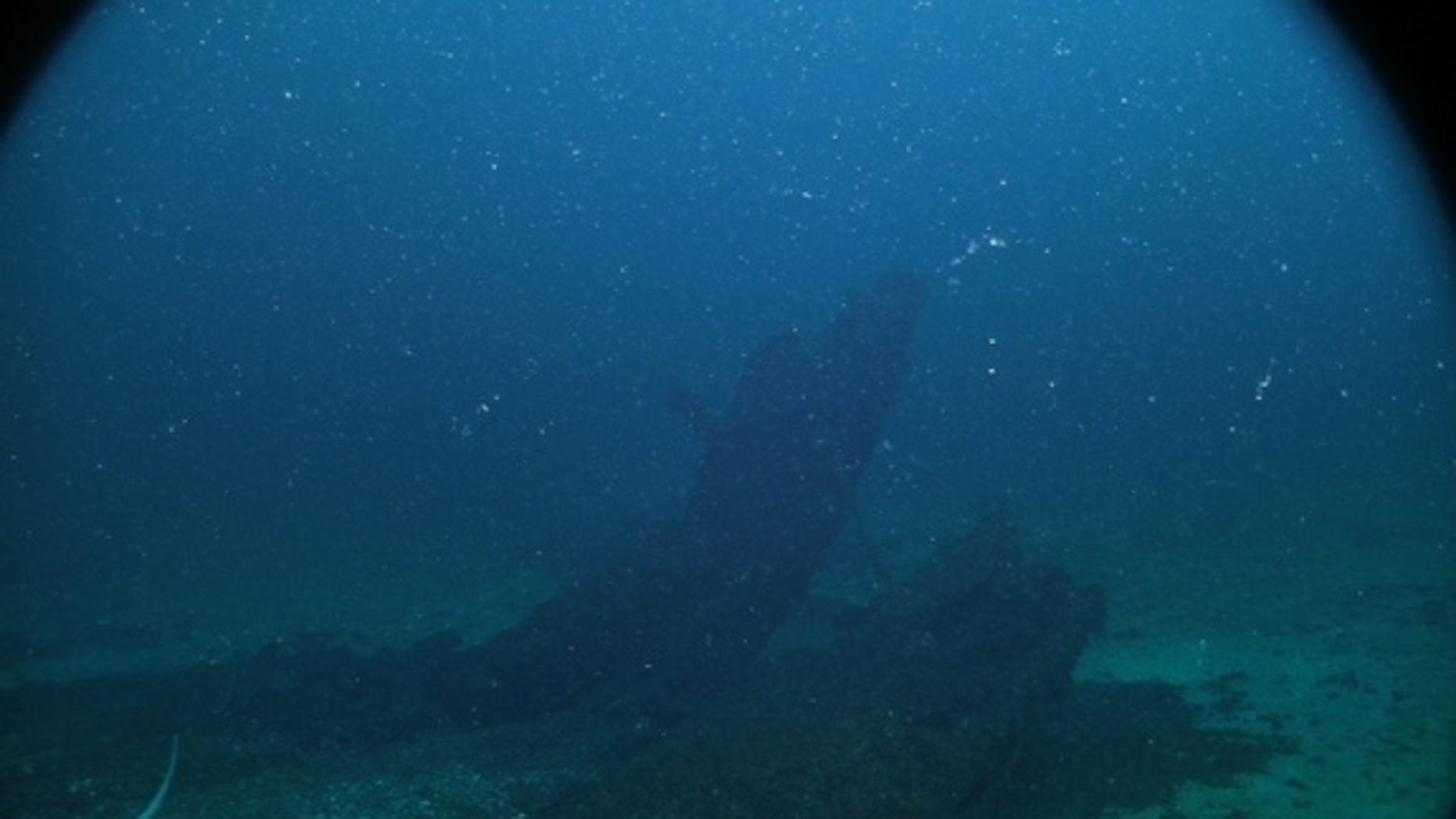 Using sonar, two treasure hunters found the remains of a shipwreck in Lake Michigan. Despite photos from several underwater dives, it's still unclear whether the wreck is the 1679 French Griffin.
