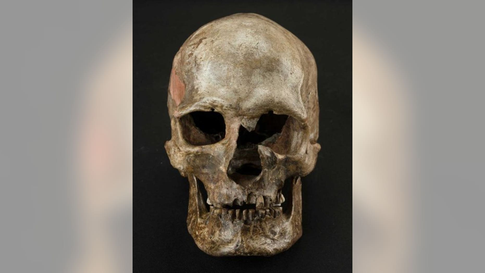 Dolnte Vestonice burial 16, South Moravia, Czech Republic. (Martin Frouz)