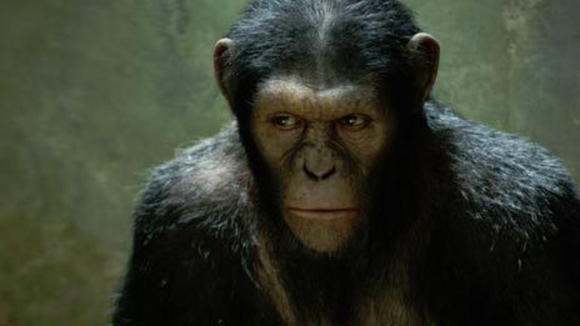 Planet of the Apes prequel Rise of the Planet of the Apes