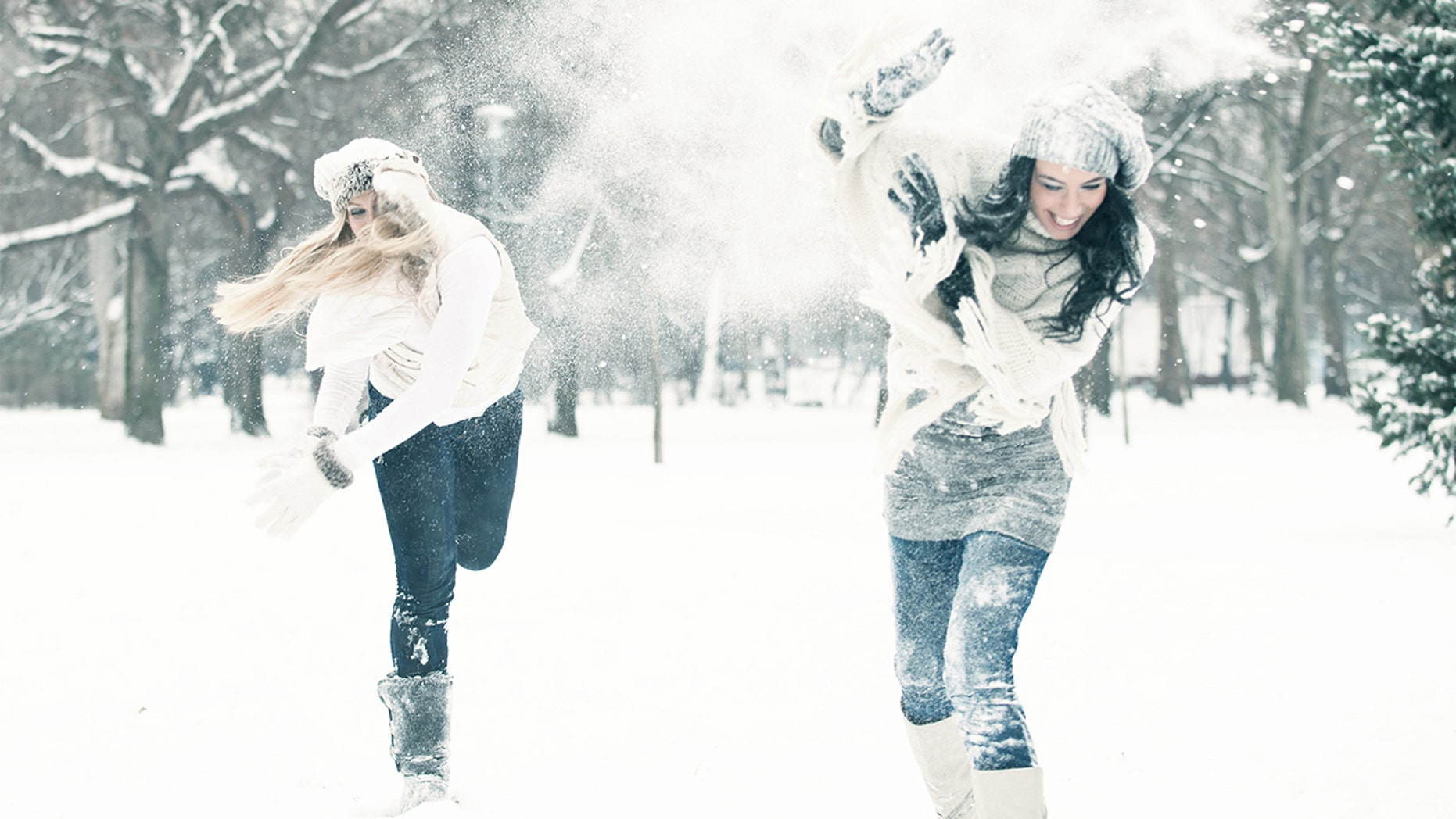 New Jersey's attempt at the world's largest snowball fight was thwarted due to too much snow