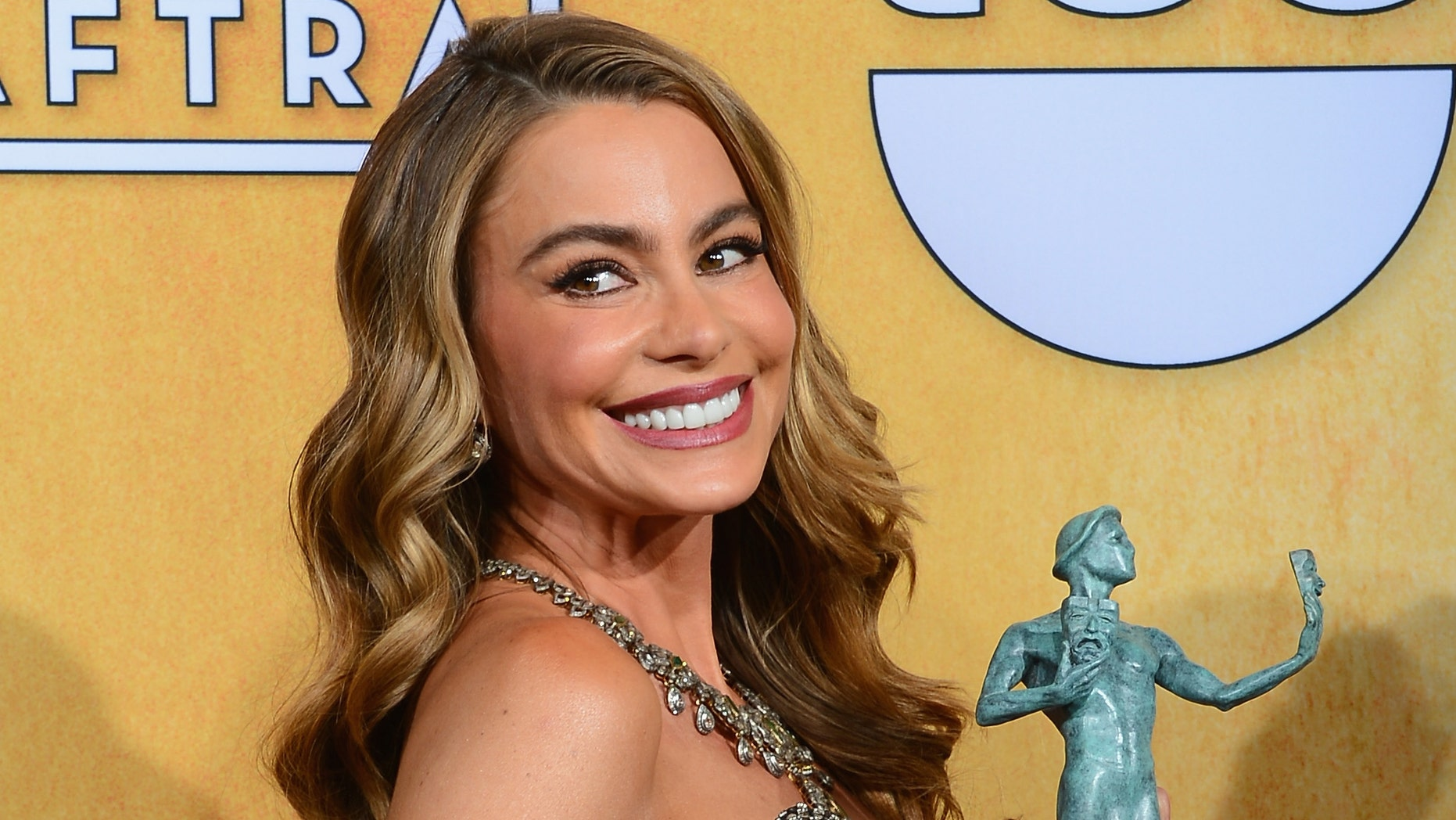 LOS ANGELES, CA - JANUARY 18:  Actress Sofia Vergara, winner of the Outstanding Performance by an Ensemble in a Comedy Series award for 'Modern Family,' poses in the press room during the 20th Annual Screen Actors Guild Awards at The Shrine Auditorium on January 18, 2014 in Los Angeles, California.  (Photo by Ethan Miller/Getty Images)