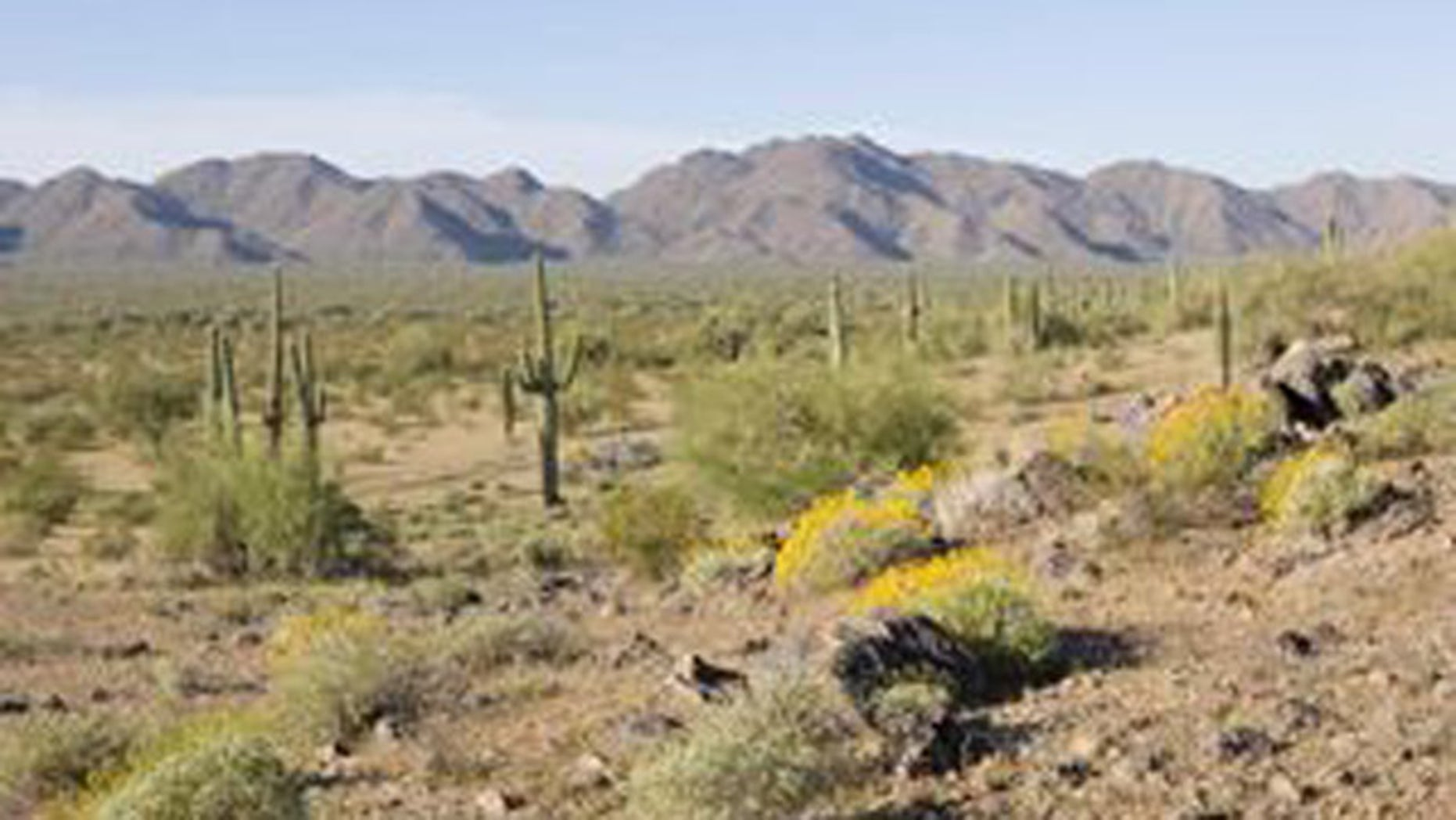 Shown here is land in the Sonoran Desert National Monument.