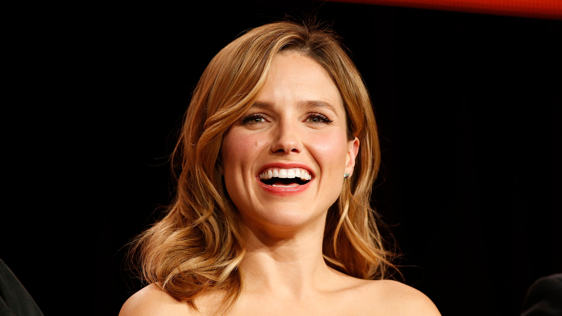 """Actor Sophia Bush speaks about the NBC television show """"Chicago Fire""""/""""Chicago P.D."""" during the TCA presentations in Pasadena, California, January 16, 2015."""