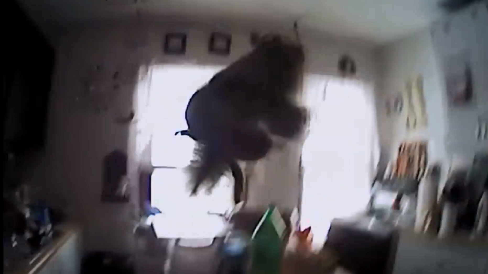 This framegrab shows the squirrel mid-flight before colliding with the police officer.