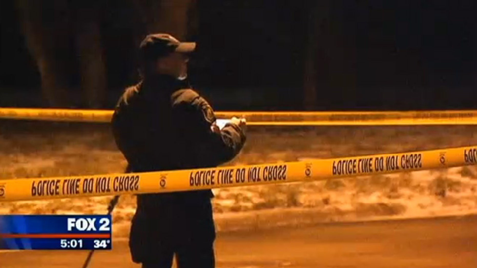 Police investigate the scene in Dearborn Heights, Mich., where a woman's body was found badly beaten and dumped along a road in suburban Detroit.
