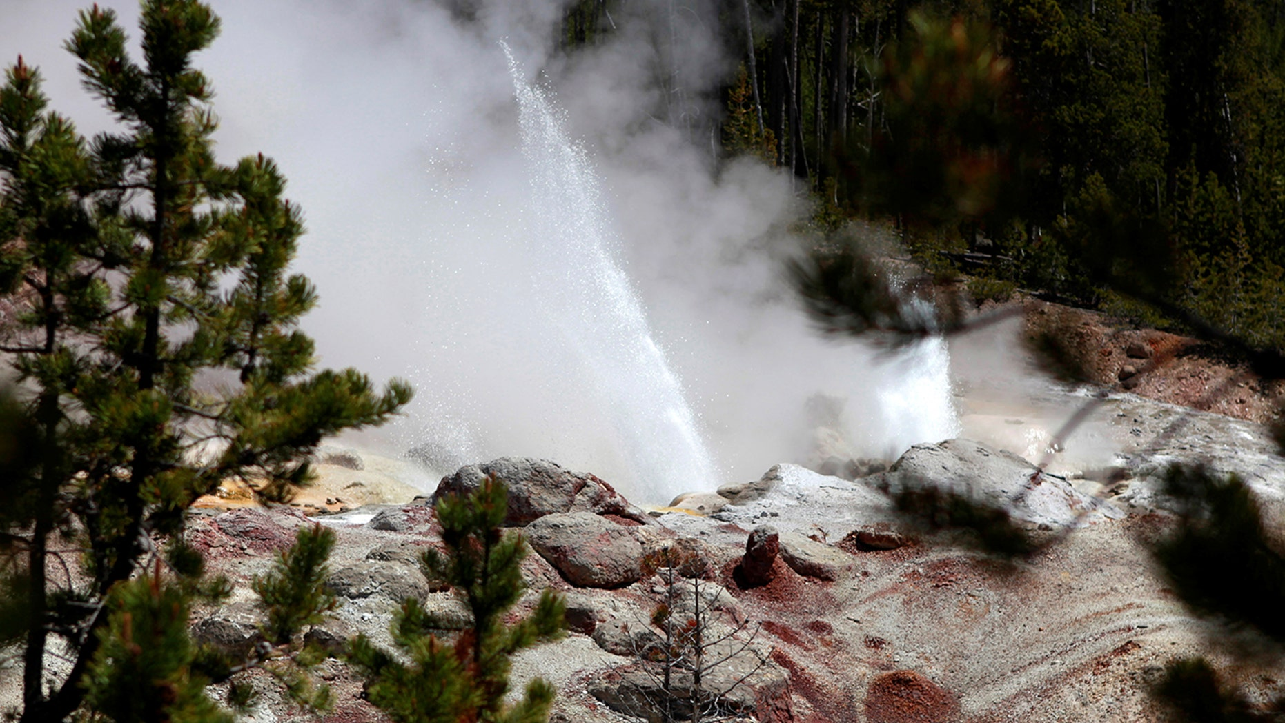 FILE: The Steamboat Geyser erupts in Yellowstone National Park, Wyoming, June 21, 2011.