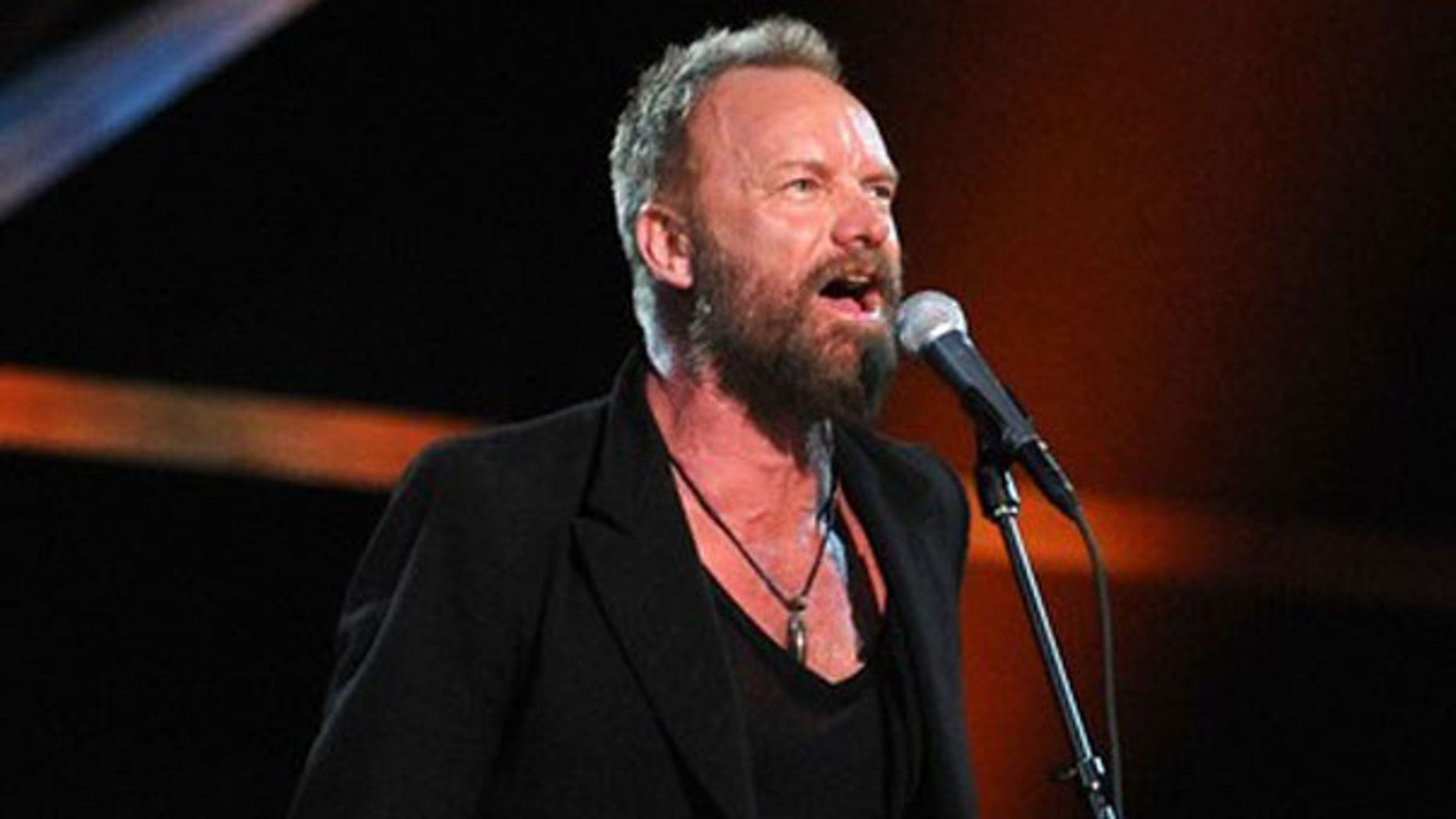 Rocker Sting is seen at a New York City performance. (AFP)