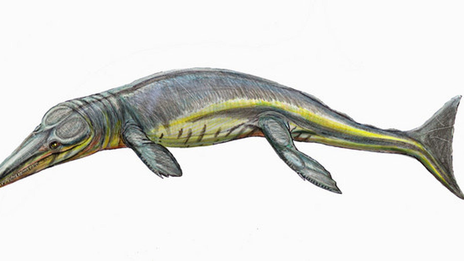 The ancient newfound crocodilian <em>Tyrannoneustes lythrodectikos</em> (shown here in an artist's rendering) would have devoured giant prey some 165 million years ago.