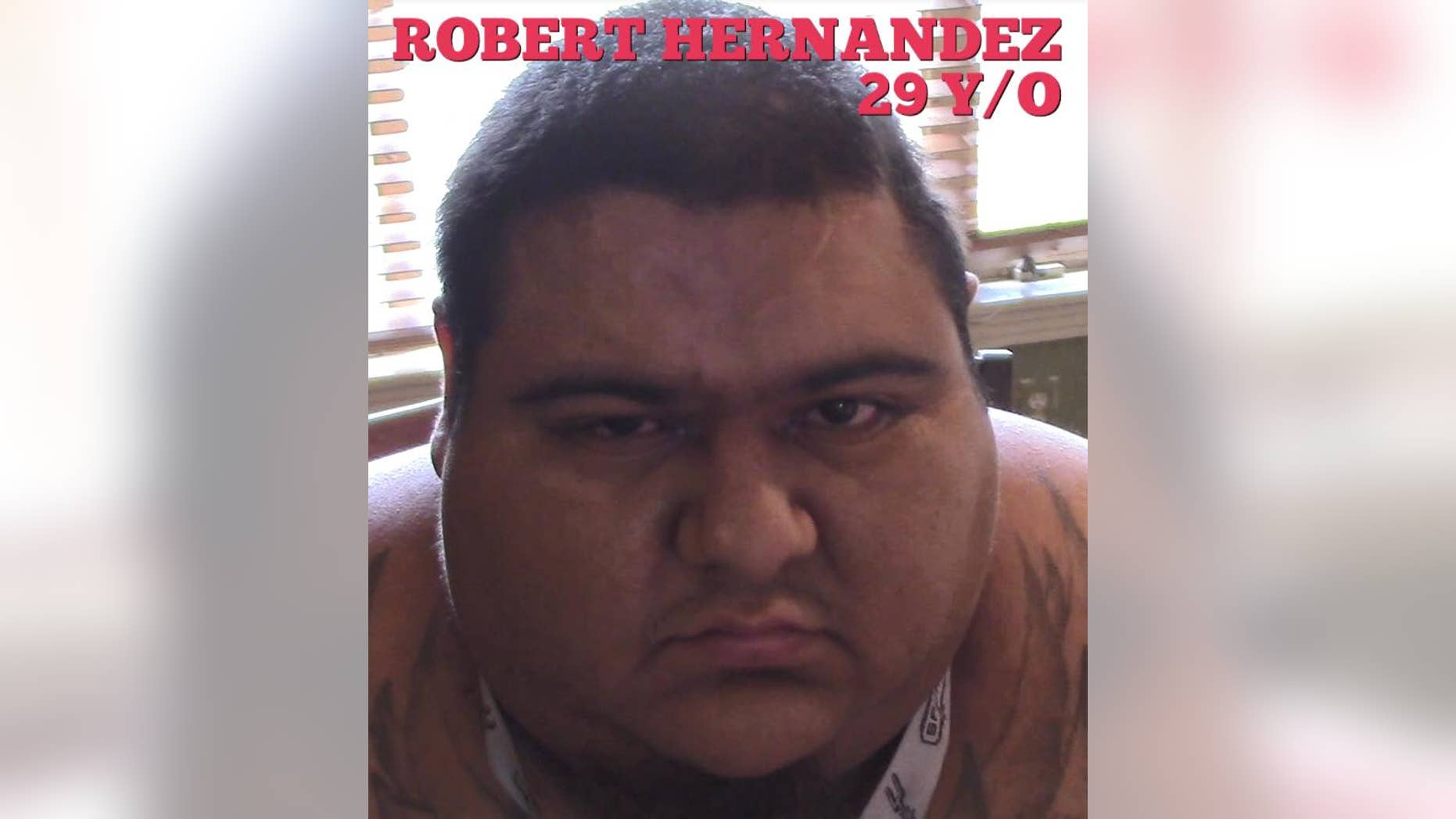 Robert Hernandez was arrested Friday after 200 pounds of marijuana was found inside his home, authorities said.
