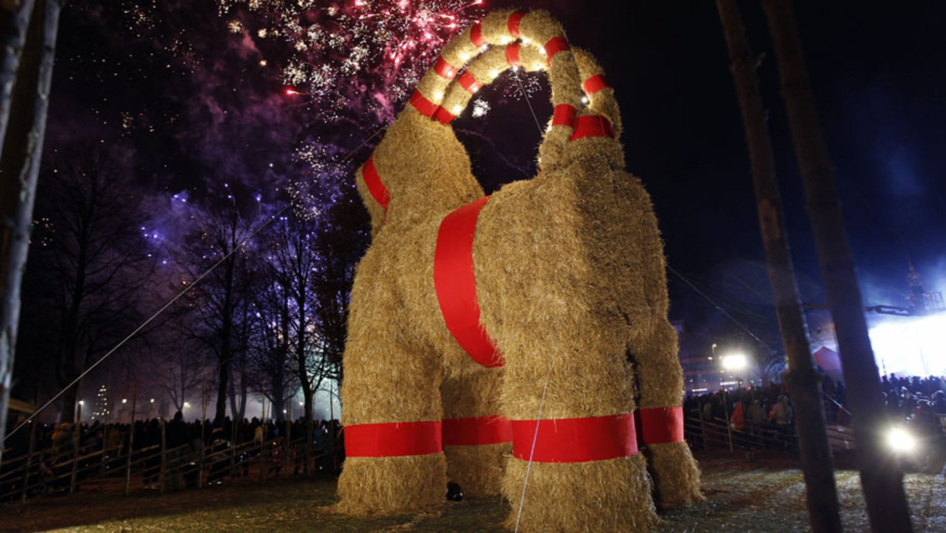 A traditional Christmas goat is unveiled in Gavle, Sweden, Sunday, Nov. 27, 2016. Sweden's Christmas Goat - a giant decorative goat made of straw and wood - is celebrating its 50th birthday, but revelers are being asked to keep the candles away. Every Christmas season since 1966, the city of Gavle in central Sweden builds a giant version of the straw goat, an ancient Scandinavian Yuletide character that precedes Santa Claus as a bringer of gifts, but it also attracts arsonists and seldom survives the season without someone trying to burn it down. To improve its odds this year, the goat set up on Sunday was equipped with closed-circuit TV. (Pernilla Wahlman/TT News Agency via AP)
