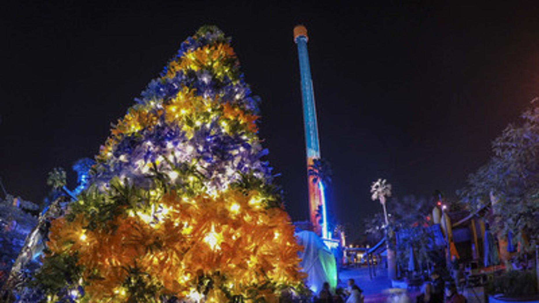 Tampa-area schools helped transform thousands of recycled plastic bottles into The Bottle Christmas Tree, on display at Busch Gardens Tampa's Christmas Town holiday celebration.