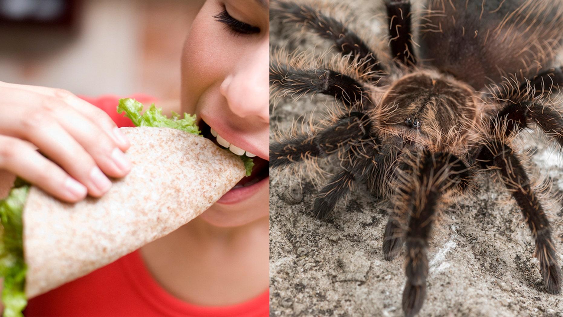A Mexico City market restaurant recently put the arachnids on its menu.