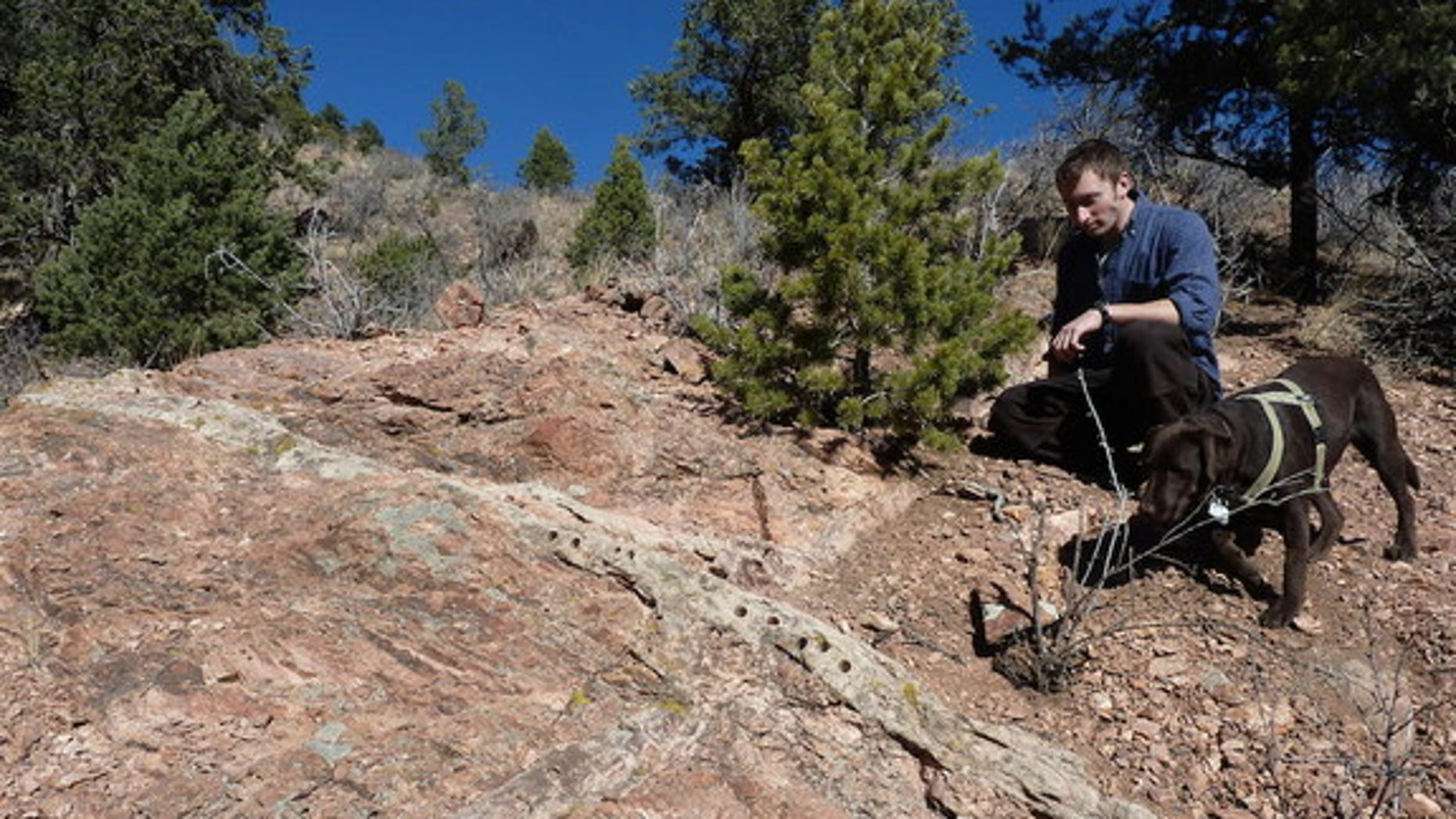 The age and explanation for the formation of the pink-colored Tava sandstone in Colorado's Rocky Mountains have long puzzled geologists.
