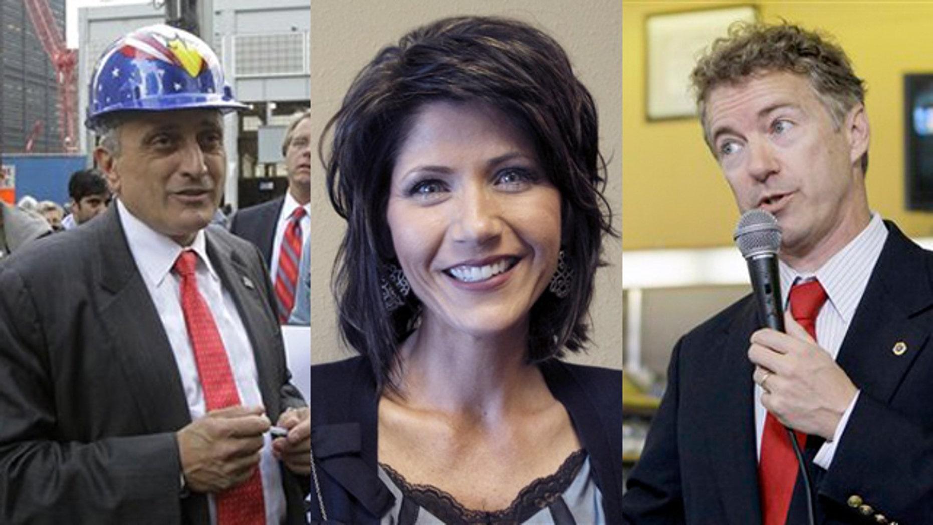 Shown here are New York gubernatorial candidate Carl Paladino, left, South Dakota House candidate Kristi Noem, center, and Kentucky Senate candidate Rand Paul. (AP Photos)