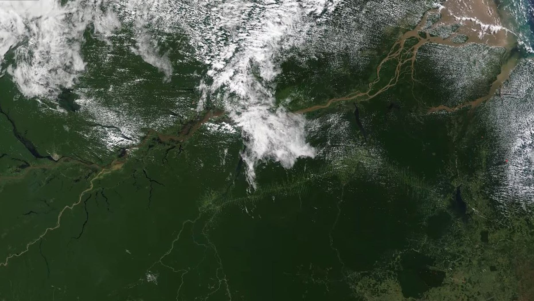 NASA's Terra satellite takes an image of the Amazon basin in South America, and observes its vegetation.