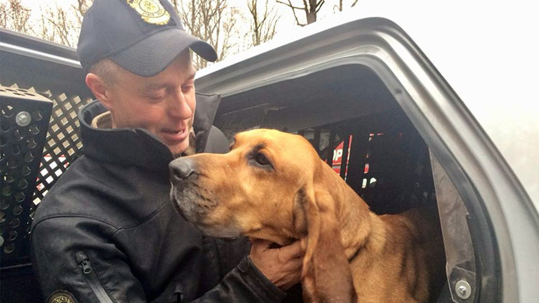 Connecticut State Police bloodhound Texas was found in the woods after being lost for a day and a half.