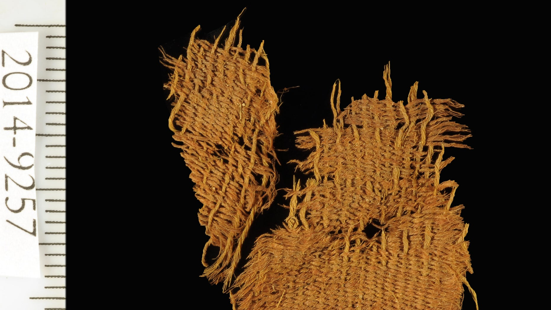 Fine wool textile dyed red and blue. The textile used the varying colors of natural animal hair to create black and orange-brown colors for decorative bands.  (Clara Amit, courtesy of the Israel Antiquities Authority)