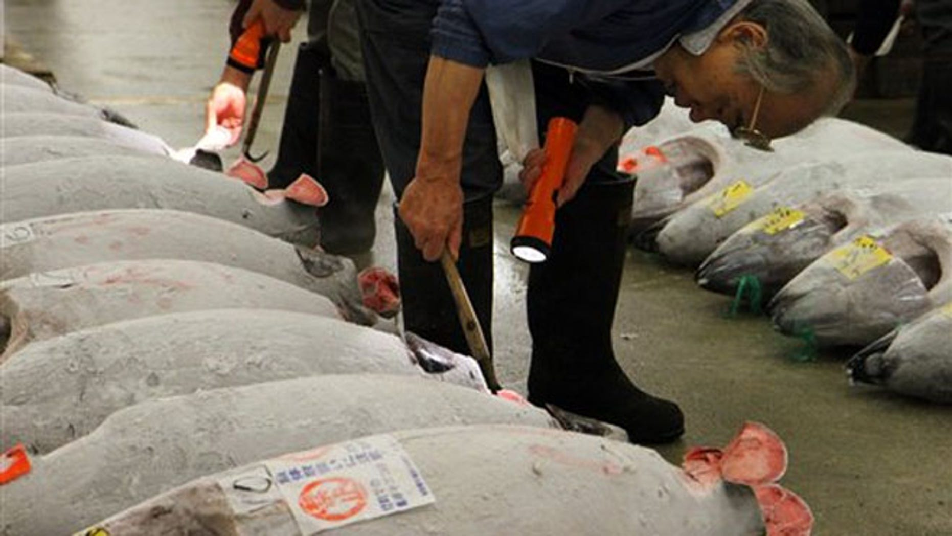 Oct. 15, 2012: Whole tunas being inspected at the Tsukiji fish market in Tokyo.