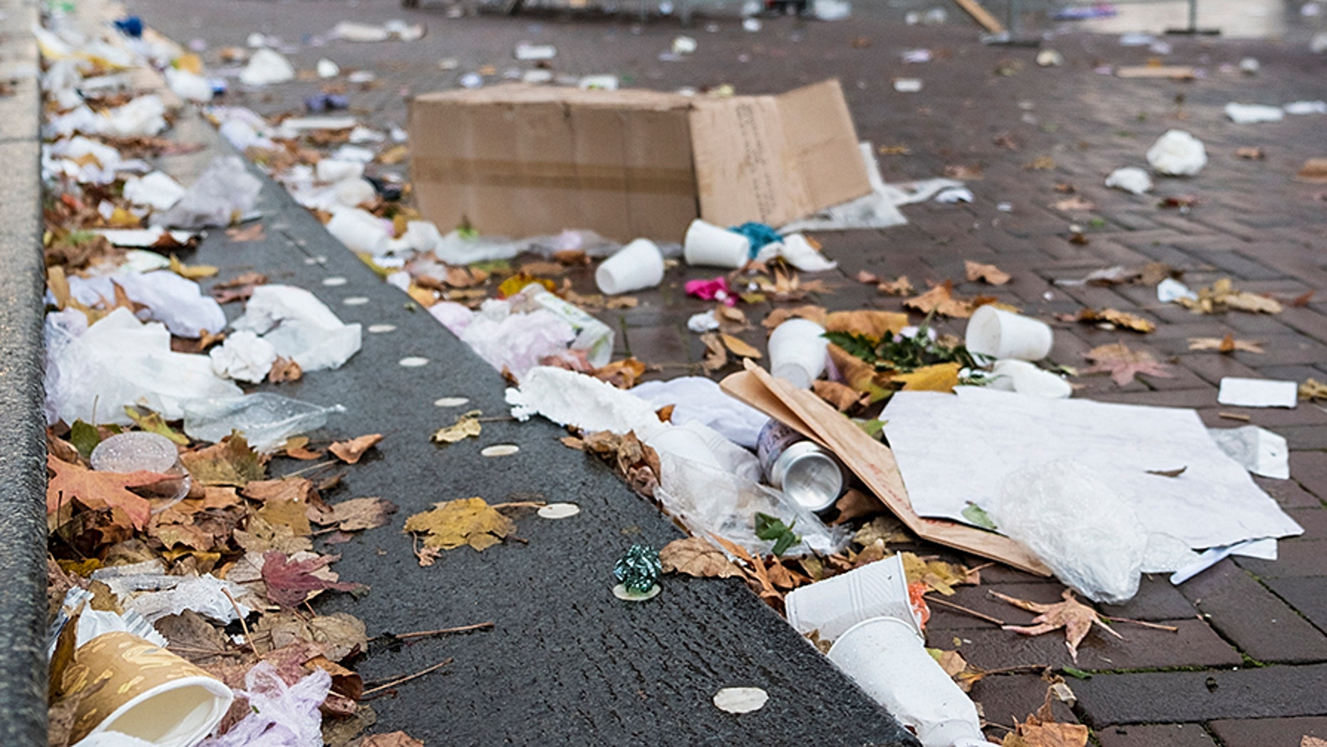 The city of San Diego began a paid program to have the homeless clean up trash.