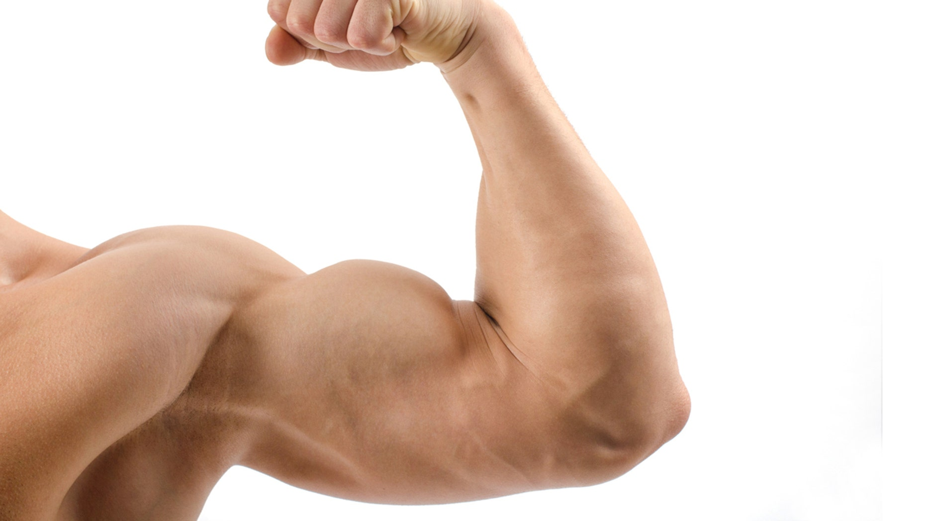 Close up on a bodybuilder biceps,shoulder,arm isolated on white background