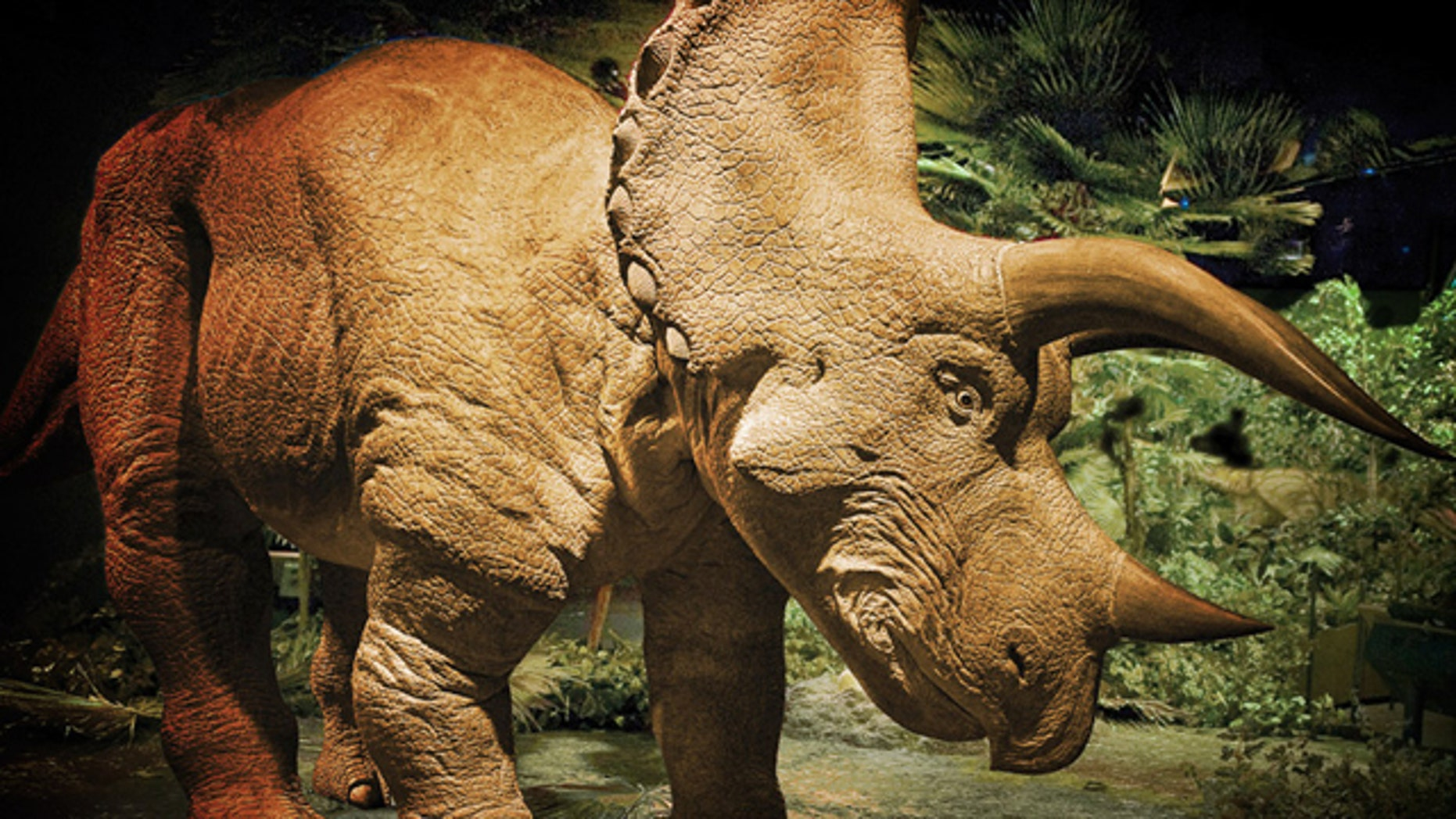 A 20-foot tall animatronic Triceratops.