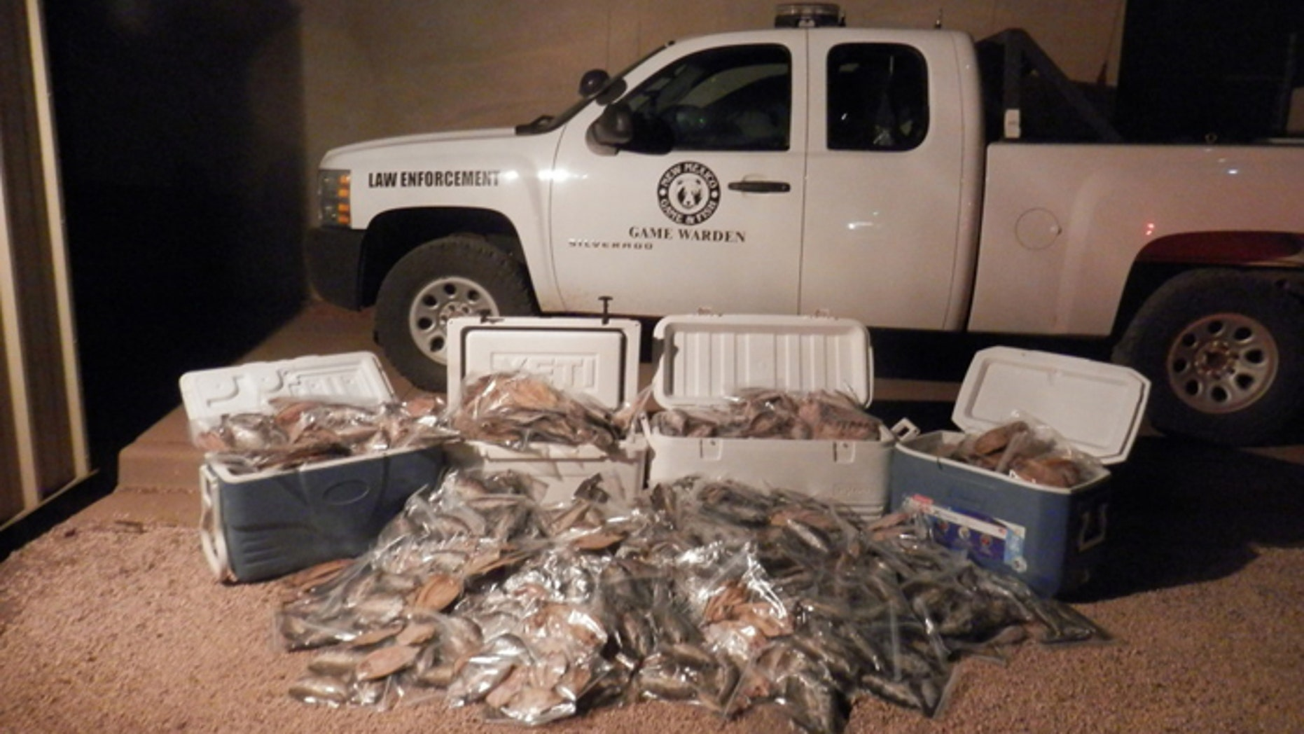 A Clovis, N.M. was nabbed with more than 160 times the legal limit of rainbow trout, caught at a stocked lake. (Courtesy: New Mexico Department of Game and Fish)