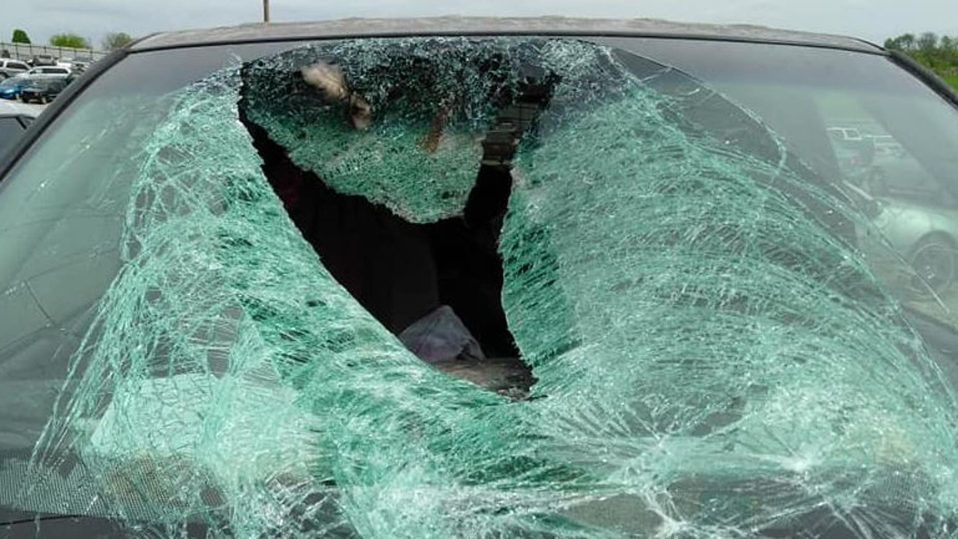 A wild turkey crashed into the windshield of a car traveling along Highway 60 to Springfield, Mo.