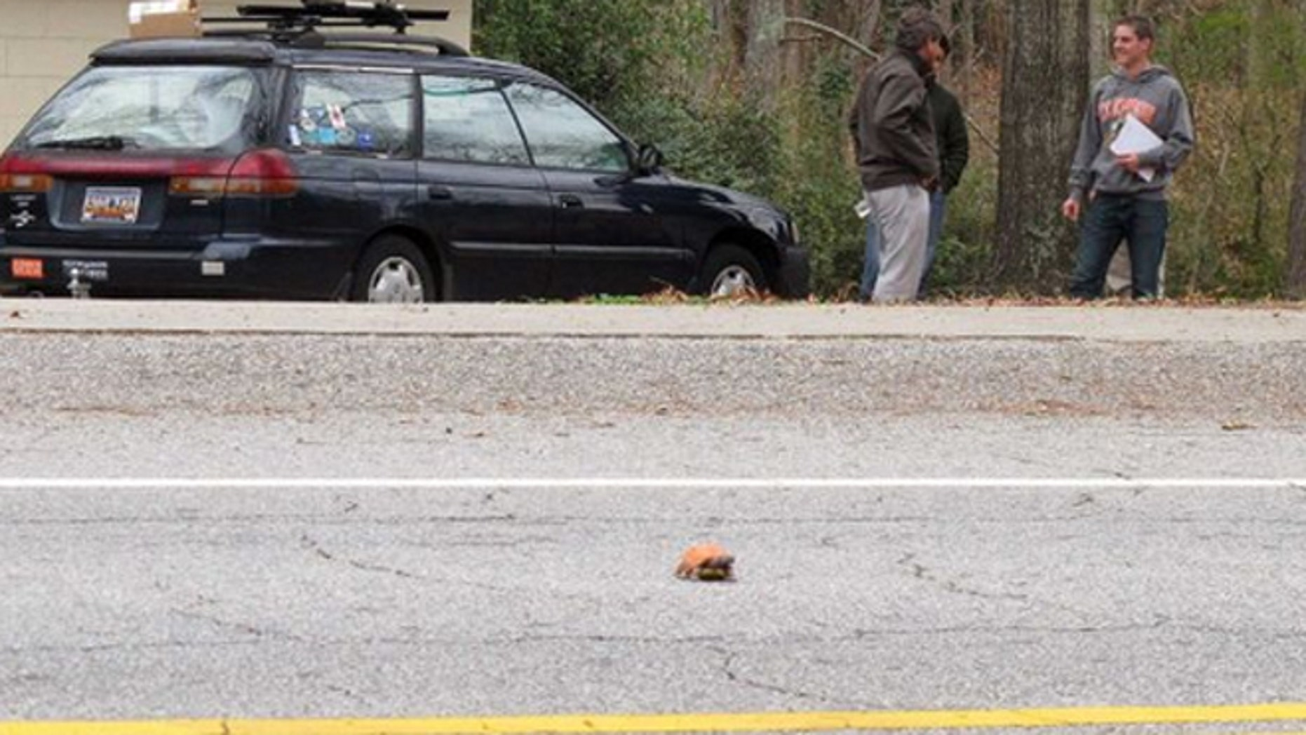 Clemson University student Nathan Weaver, right, talks with his professor, Rob Baldwin, left, as they wait to see if a fake turtle he is using in his research is run over in a road near Clemson, S.C.