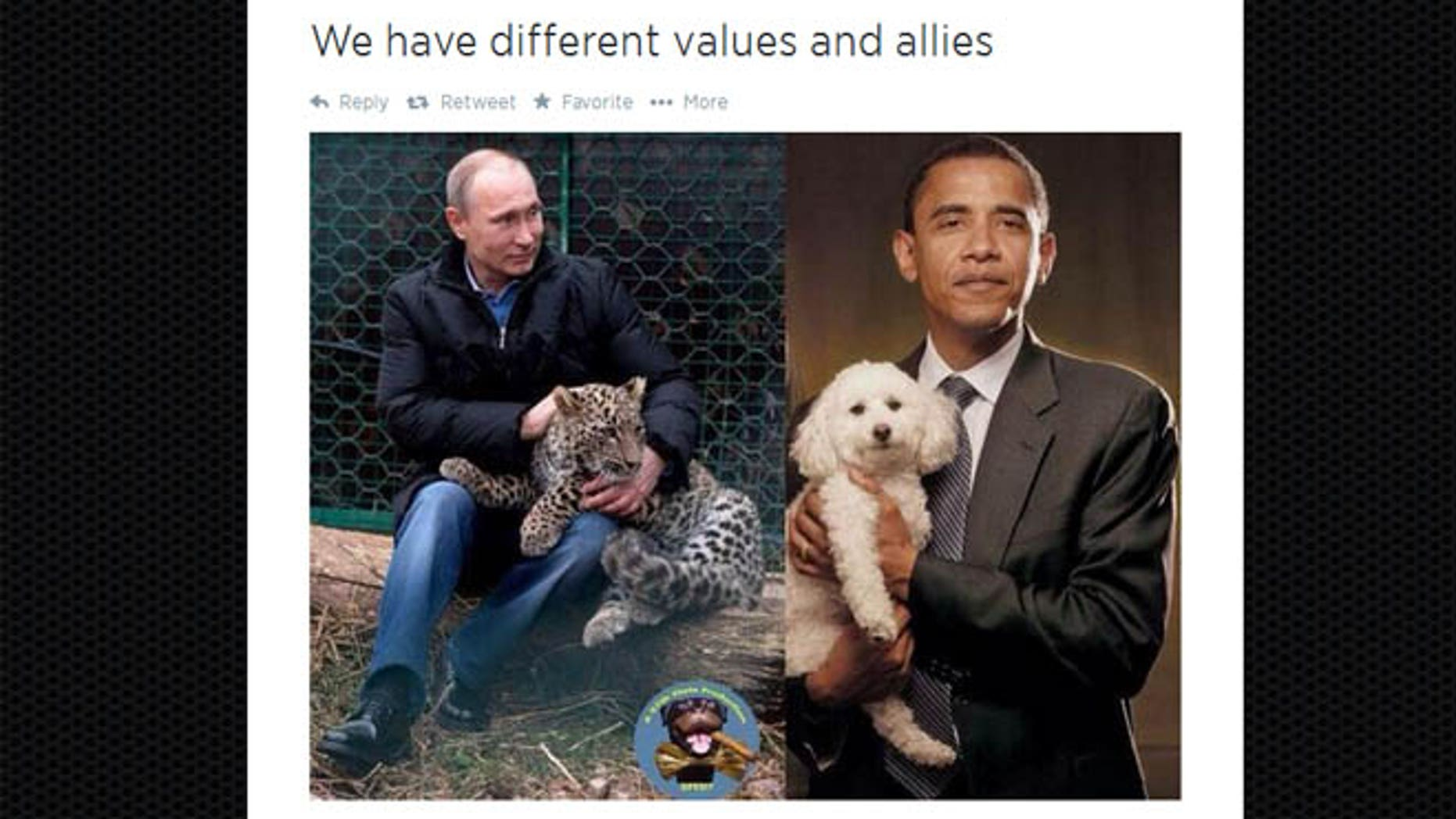The image here was tweeted by Russia's deputy prime minister Dmitry Rogozin.