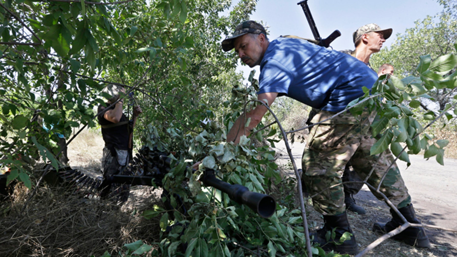 Aug. 15, 2014: A Pro-Russian rebel camouflages a weapon at a position on the frontline near the village of Krasnodon, eastern Ukraine.