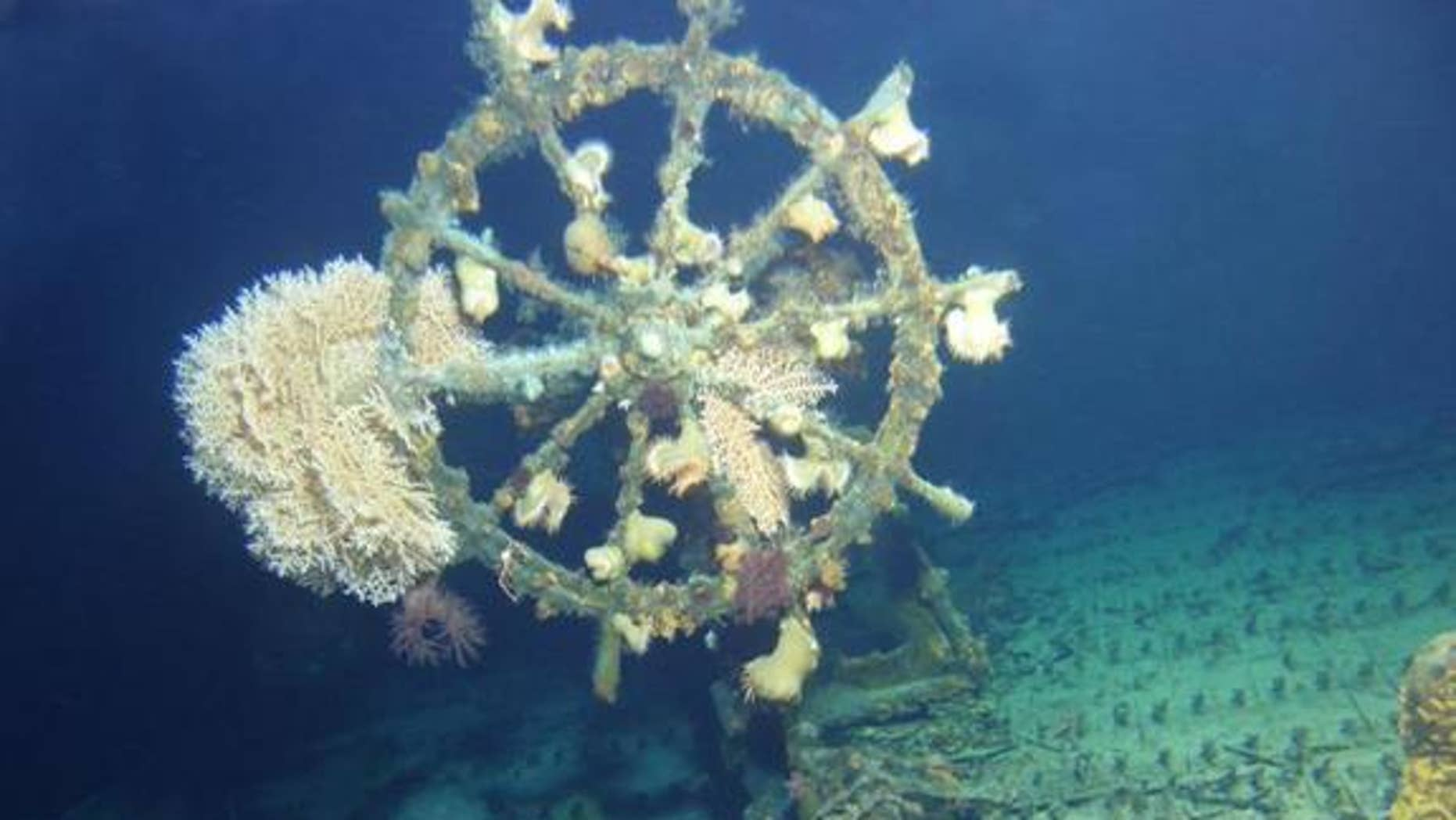 The U.S.S. Kailua, a sunken cable repair ship that was torpedoed in 1946, was recently rediscovered off the shores of Oahu, Hawaii. The ship's wheel, shown here, was still in its original location.
