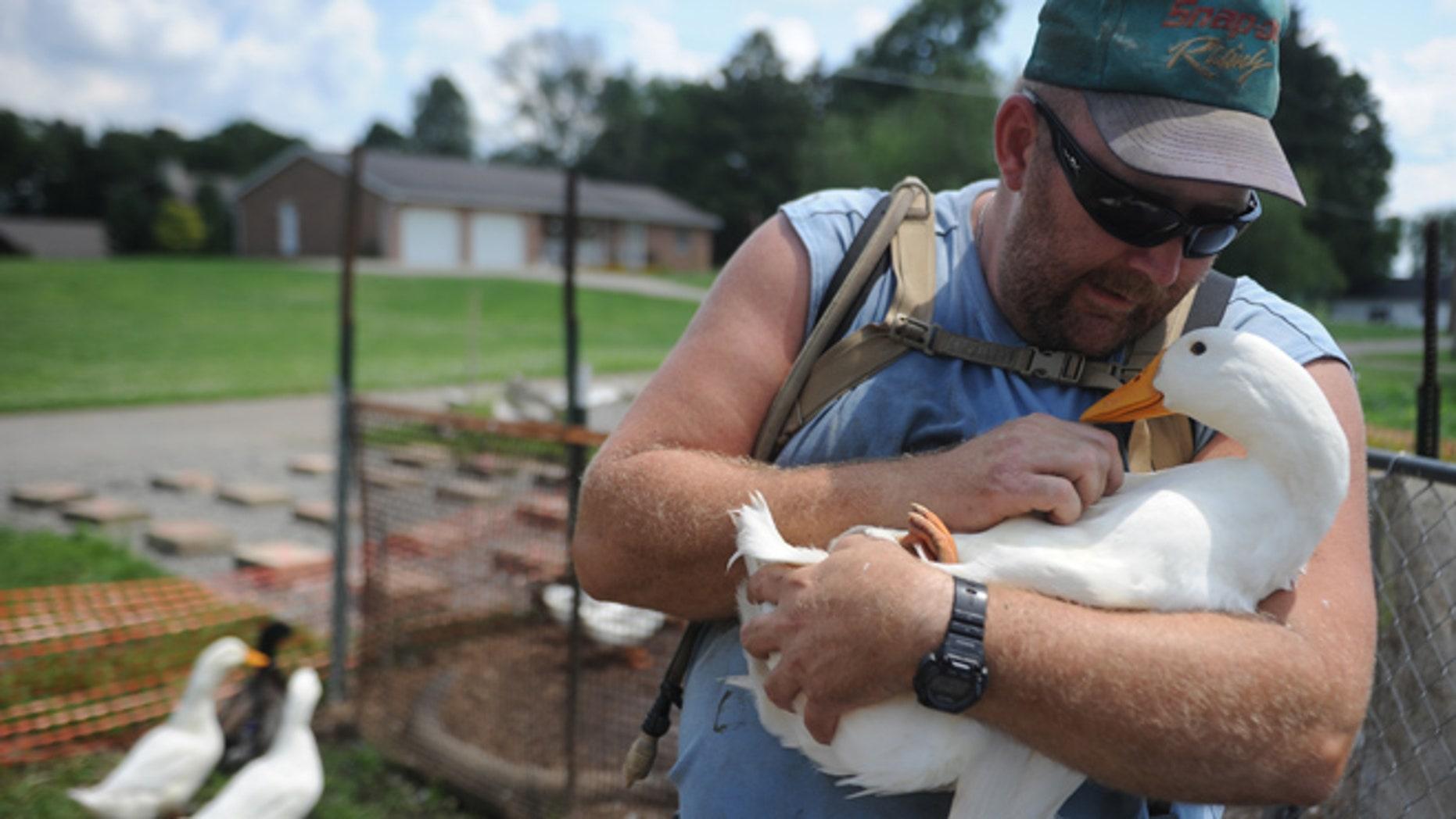 Iraq veteran faces fine for therapeutic pet ducks | Fox News
