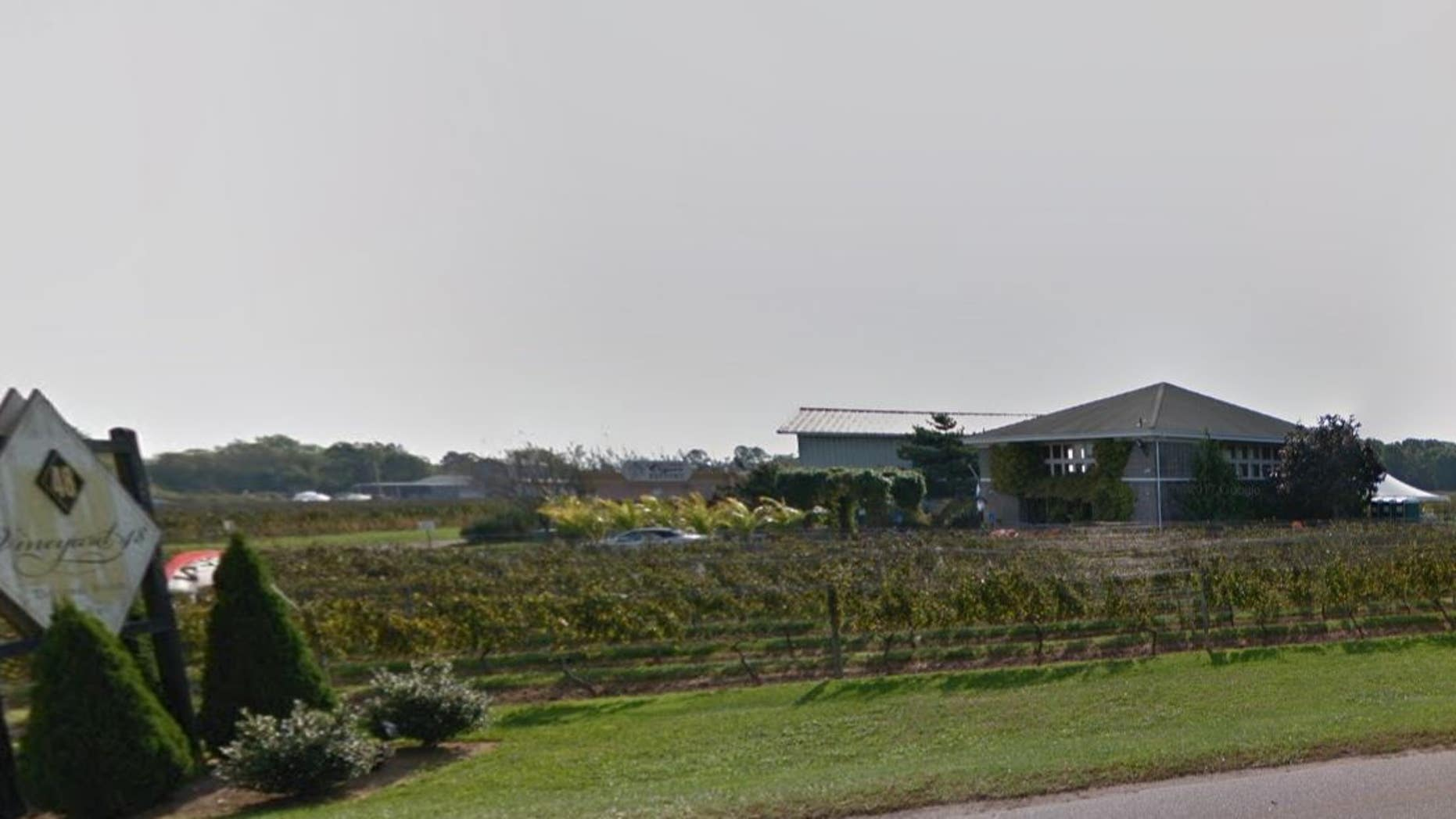 New York winery shuts down after wild sex parties, poop antics cost  business its liquor license