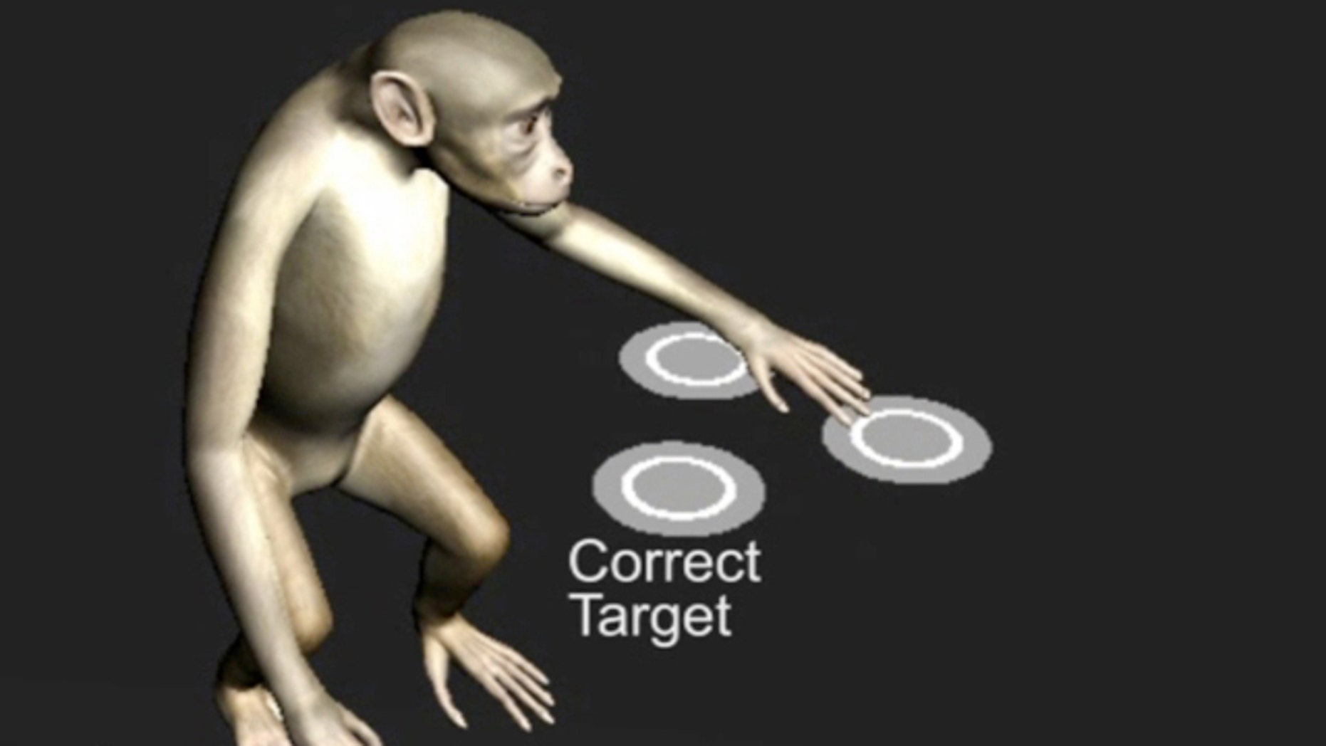 A screenshot of a virtual monkey selecting among identical objects, controlled by the monkey's brain.