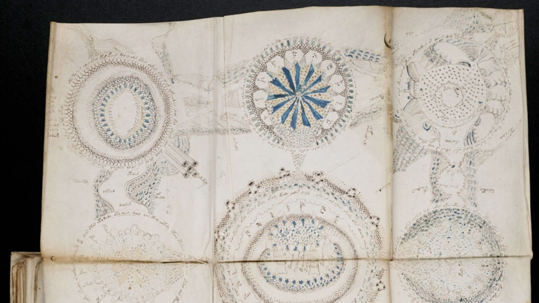The Voynich manuscript's unintelligible writings and strange illustrations have defied every attempt at understanding their meaning. (Credit: Beinecke Rare Book and Manuscript Library, Yale University)