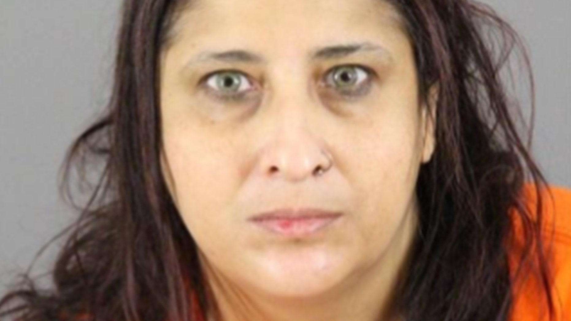Waheba Issa Dais, 45, maintained a 'virtual library of instructions on how to make bombs, biological weapons, poisons and suicide vests to assist self-proclaimed ISIS members and supporters in their attack planning,' the Justice Department says.