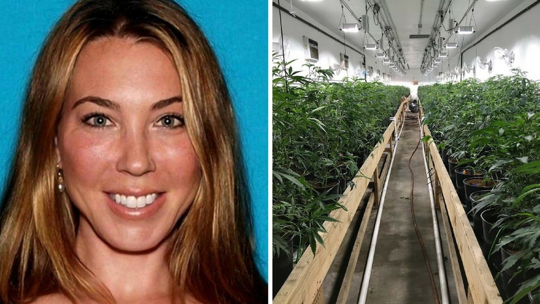 Stephanie Smith, 43, owned three properties that grew thousands of marijuana plants, police said.