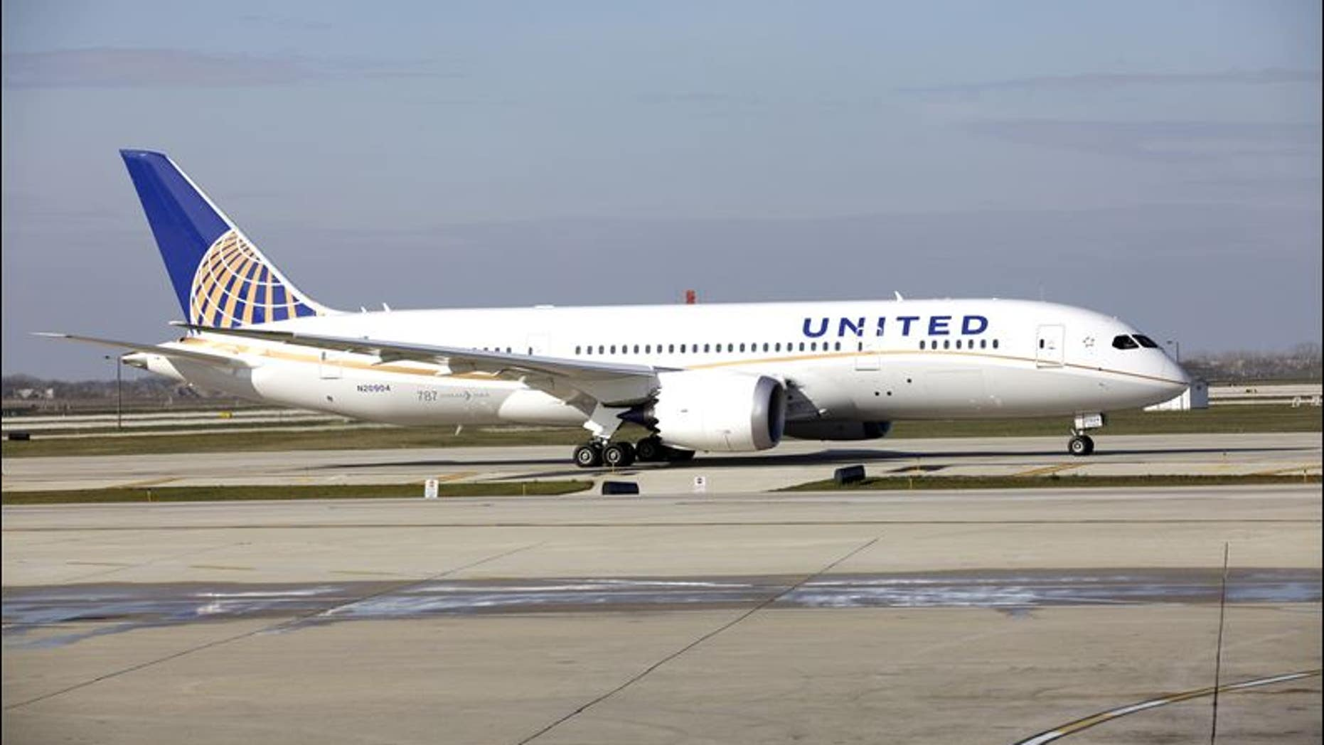 A United Airlines flight touches down at Chicago O'Hare International Airport.
