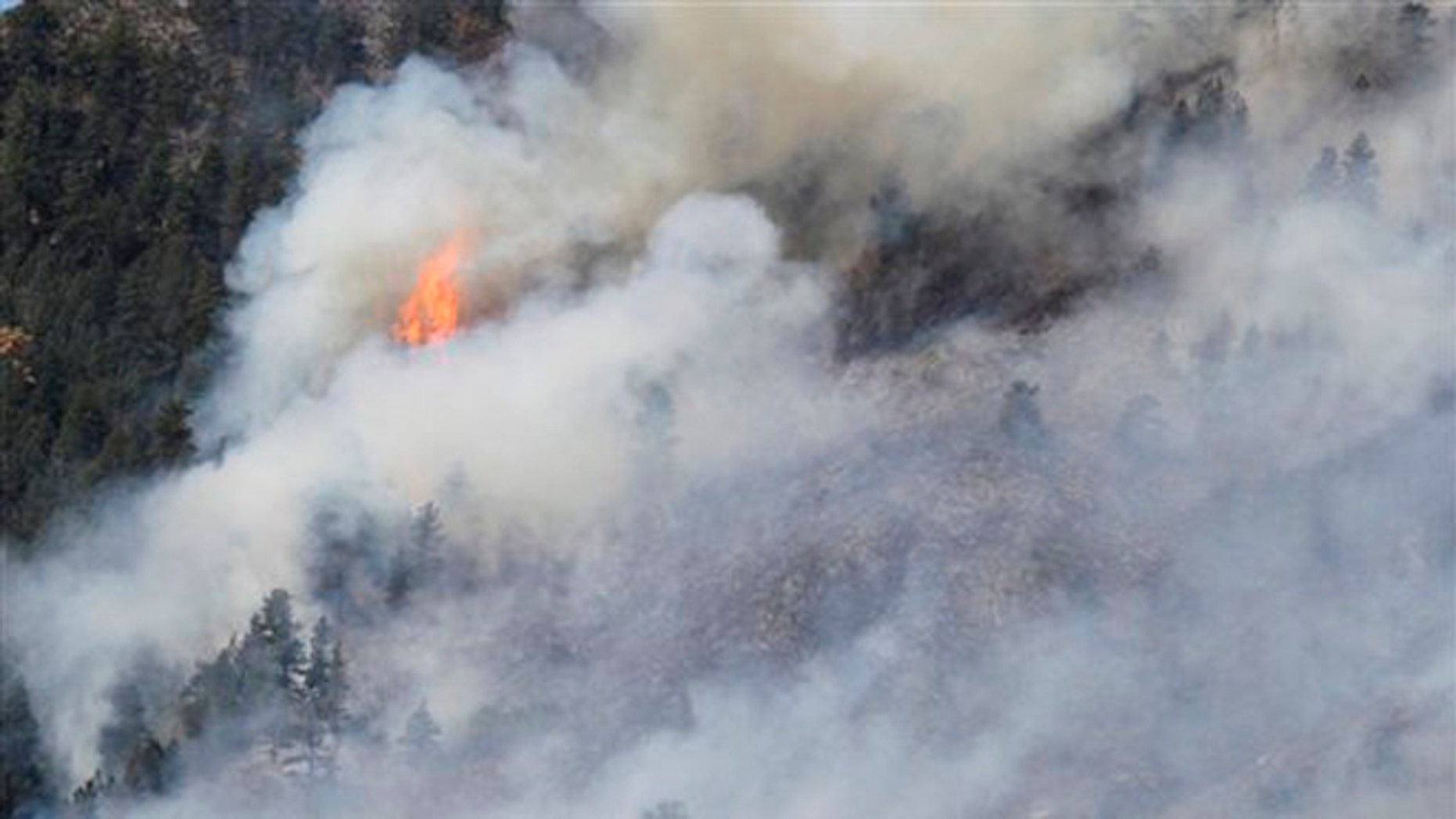 June 11, 2012: Fire burns through trees on the High Park wildfire near Fort Collins, Colo.
