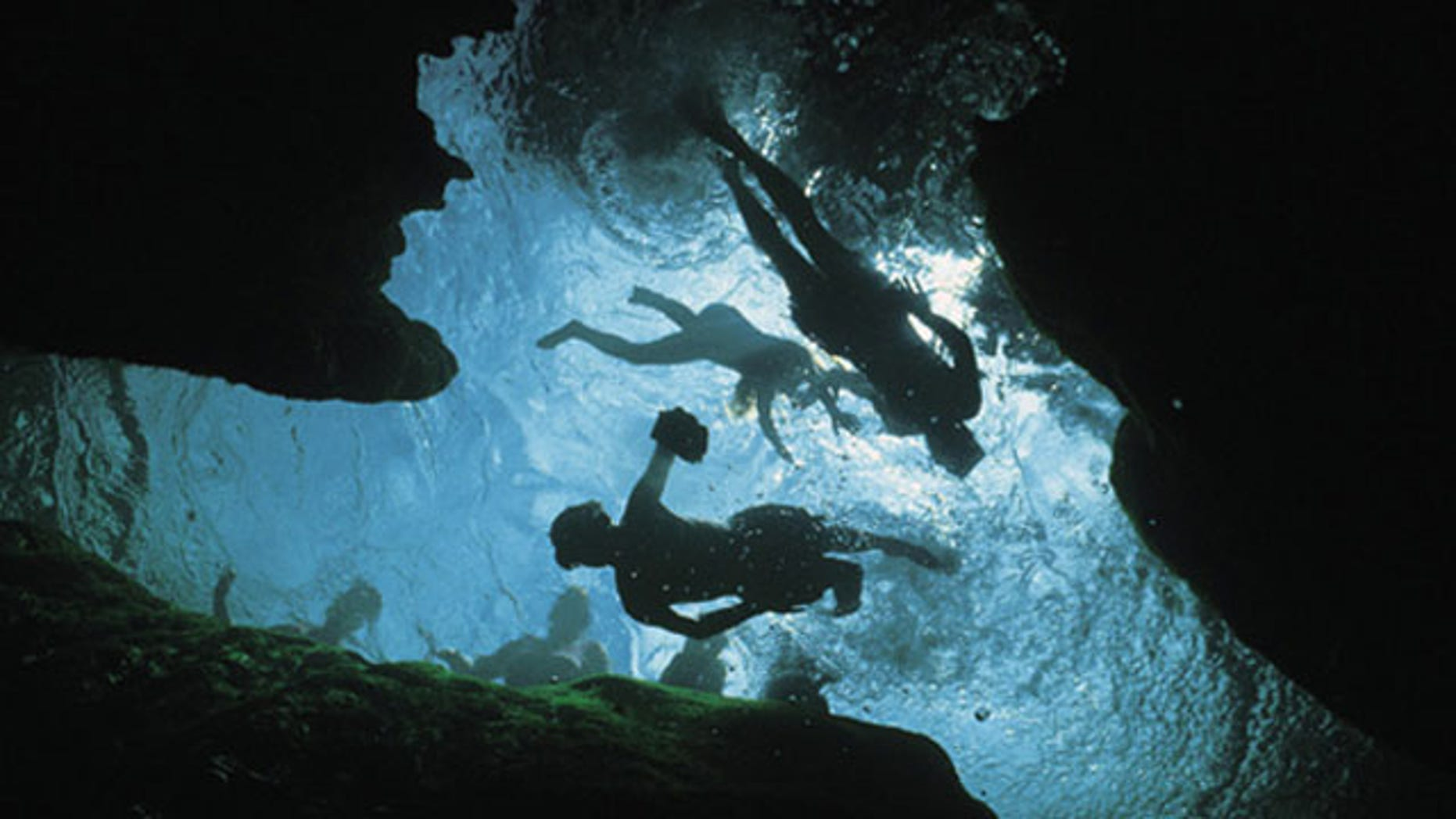 View from below of snorkelers on the surface of a spring in Wekiwa Springs State Park.