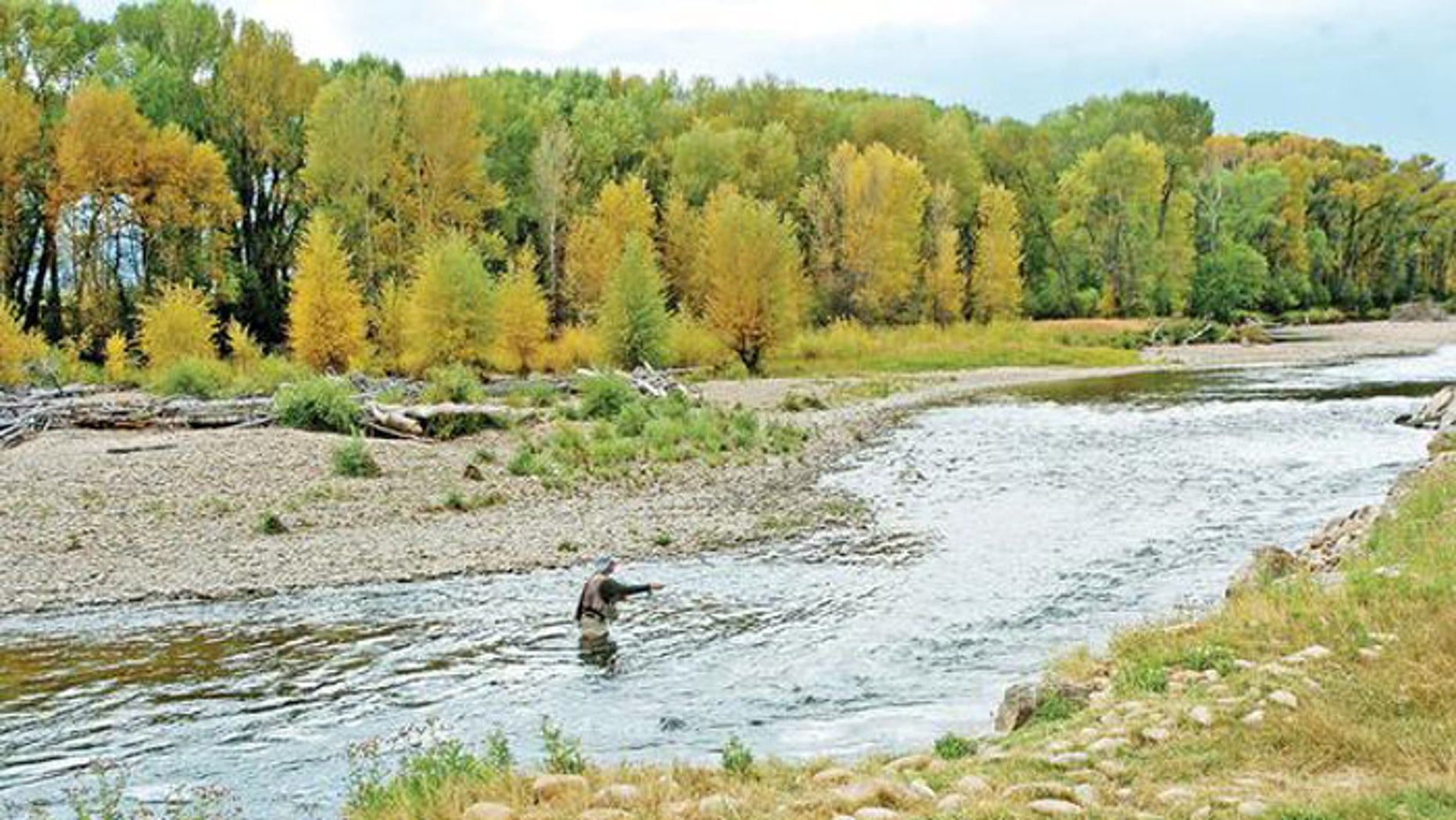 Environmentalists say the state's waterways are being polluted by runoff from ranches. (AP)