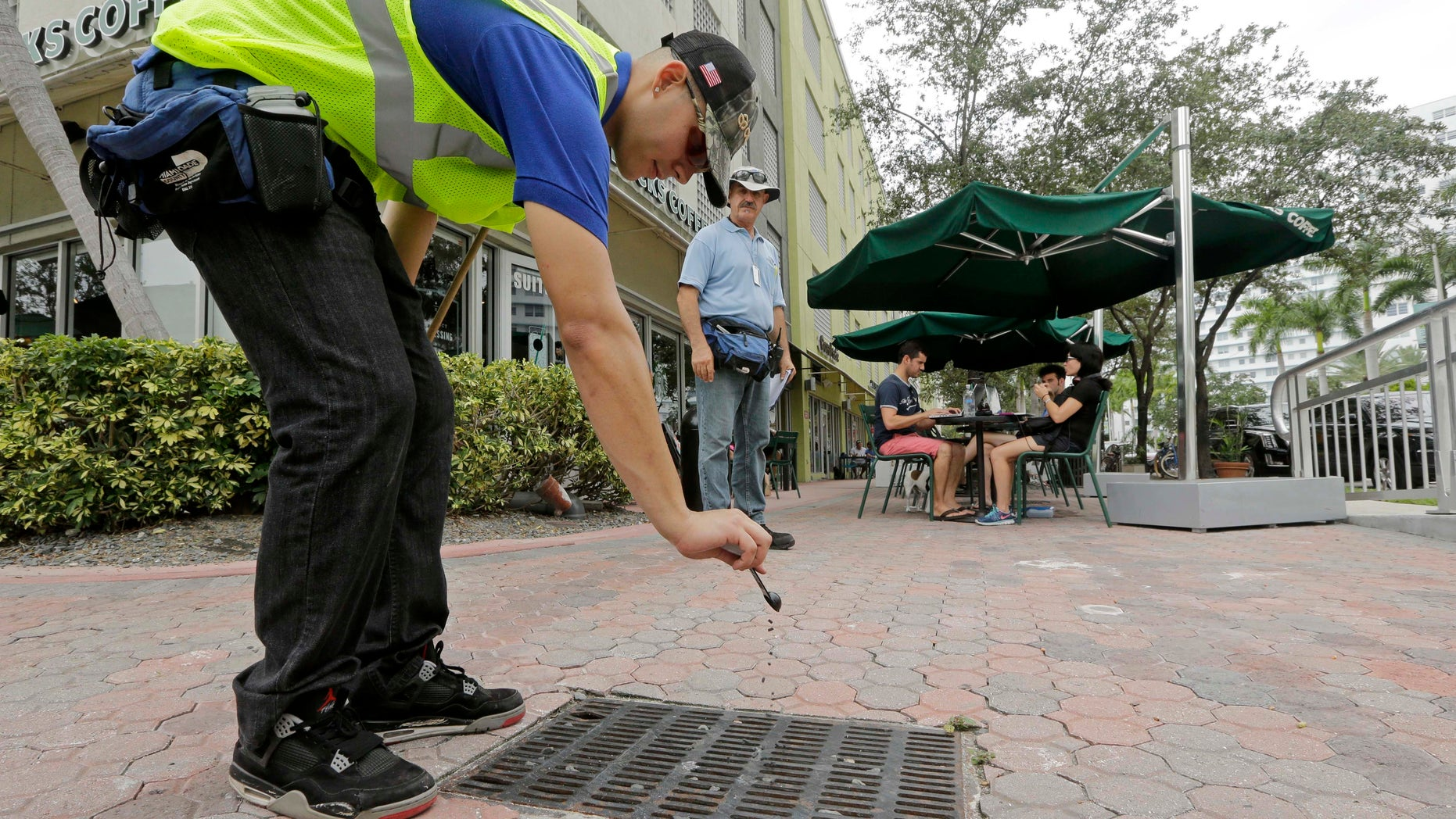 Miami-Dade mosquito control contractor Alejandro Espinosa pours chemicals into a storm sewer on a sidewalk, Friday, Sept. 2, 2016, in Miami Beach, Fla.