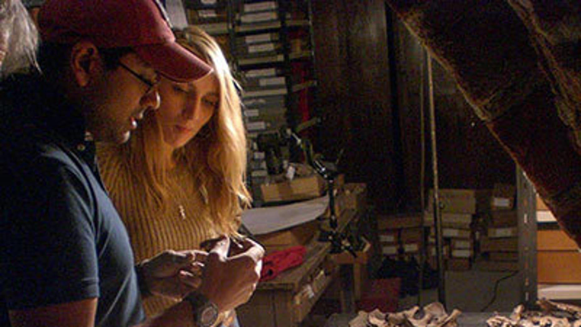 Stanford Assistant Professor Krish Seetah and Reading University student Rose Calis analyze animal bones in the basement of Riga Castle, Latvia.