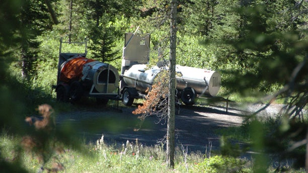 July 29: Three traps - one with a mother bear and another with two of its offspring - are set up at the Soda Butte Campground near Cooke City, Mont.