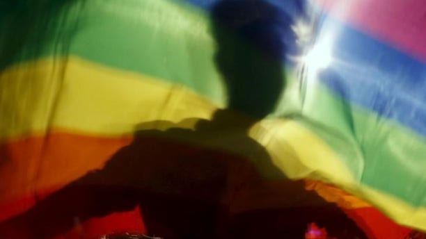 A gay man is silhoutted on a gay rainbow flag during a demonstration for gay rights in Hanoi