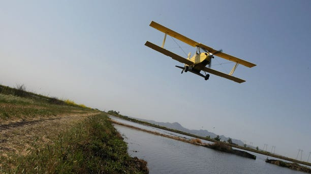 BIGGS, CA - APRIL 25:  A bi-plane from Williams Ag Service drops rice seeds on a field April 25, 2008 in Biggs, California. California rice growers are in the midst of planting nearly 549,000 acres of rice throughout the Sacramento Valley as rice consumers around the world face rice shortages and higher prices.  (Photo by Justin Sullivan/Getty Images)