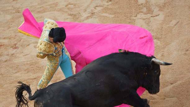 Mexican novillero bullfighter Sergio Flores performs with a bull during a bullfight on the eve of the 2011 San Fermin festival in Pamplona, on Tuesday, July 5, 2011 in Pamplona, Spain.