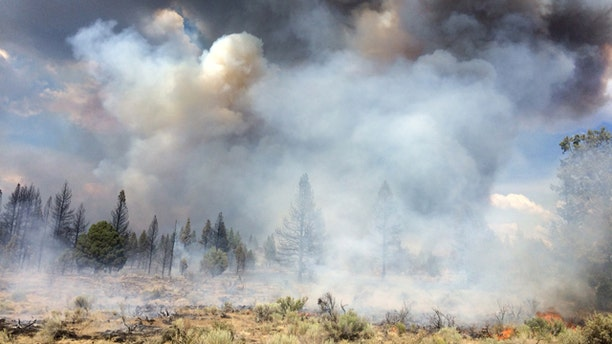 July 13, 2014: In this photo released by the Oregon Dept. of Forestry, the Moccasin Hill fire burns north of Sprague River and northeast of Klamath Falls, Ore. (AP Photo/Oregon Dept. of Forestry, Dennis Lee)