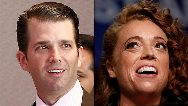 Donald Trump Jr. teased comedian Michelle Wolf because Netflix canceled her show that often made crude jokes about the Trump family.